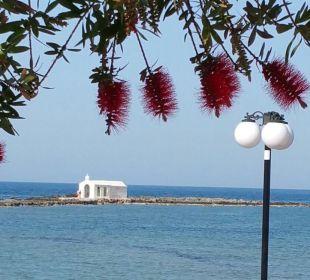Ausblick vom Speiseraum Hotel Corissia Beach