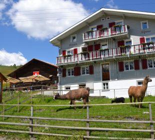 Aussenansicht Gasthaus Gasthaus Alpina
