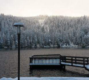 Ausblick hinter dem Hotel Berghotel Mummelsee