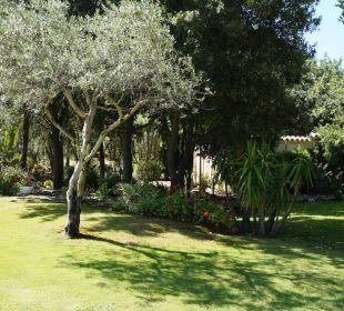 Sehr schöner und großer Garten S'Arenada Hotel