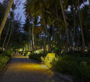 Garten  Hotel Vista Sol Punta Cana