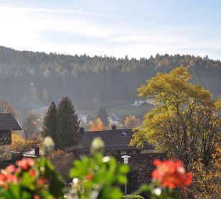 Blick zum Silberberg Haus Drei Tannen