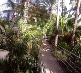 Garten Hotel Dunas Don Gregory