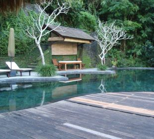 Hotelpool Hotel Nandini Bali Jungle Resort & Spa