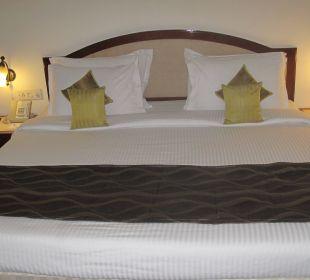Unser Bett Clarks Shiraz Hotel