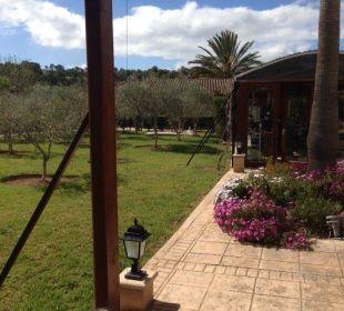 Garten und Wintergarten Agroturismo S'Hort de Son Caulelles