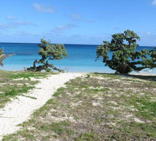 Ausblick von der Terrasse aus Sandy Beach Resort Tonga