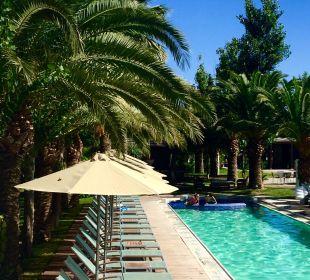 Zawsze wolne leżaki  Hotel Minos Mare Royal