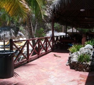 Strandbar Hotel Club Amigo Bucanero (existiert nicht mehr)