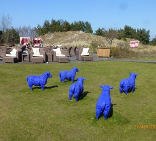Blaue Schafe und Ruhebereich Strandhotel Dünenmeer