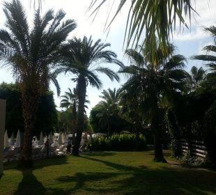 Gartenanlage mit Palmen Club Sidera (Vorgänger-Hotel – existiert nicht mehr)