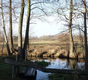 Das Fließ hinter dem Appartement-3 NaturApartments & LandHaus Stauensfließ