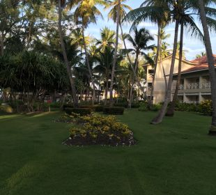 Gartenanlage Hotel Vista Sol Punta Cana