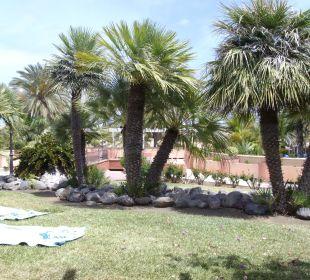 Eine kleine grüne Oase Dunas Suites&Villas Resort