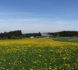 Alleinlage in Mitten von Wiesen und Wald Ferienbauernhof Oberjosenhof