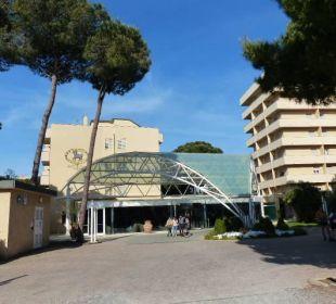 Ansprechender Eingangsbereich Park Hotel Marinetta