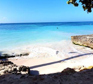 Ruhiger Strandabschnitt Dreams La Romana Resort & Spa