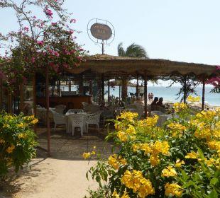 Eine der Strandbars
