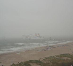 Nebel, Kälte, Flut Hotel Neptun