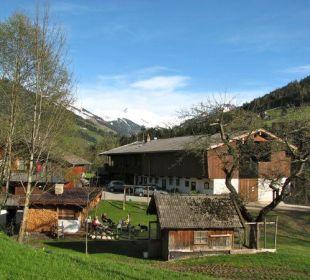 Worglerhof farm springtime Wörglerhof Alpbacher Hüttenappartements & Saunaalm