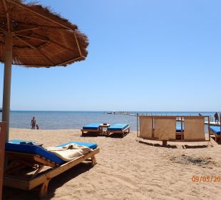 Strand Albatros Palace Resort