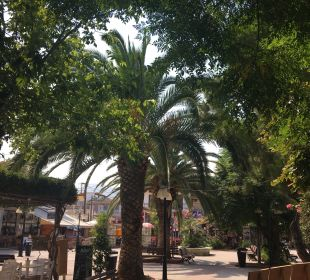 Gartenanlage Hotel Apollon