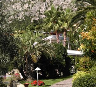 Wunderschöne Pflanzen Park Hotel Imperial Centro Tao - Natural Medical Spa