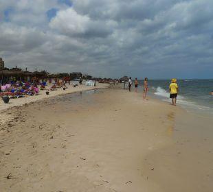 Clean beach Hotel El Mouradi Palm Marina