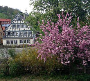 Aus dem Zimmer Hotel Schloss Döttingen