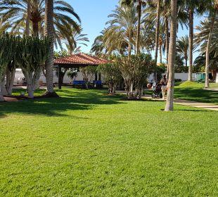 Liegewiesen  ROBINSON Club Jandia Playa