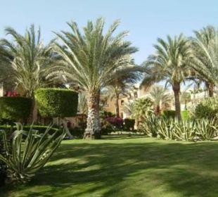 Der wunderschöne Garten!