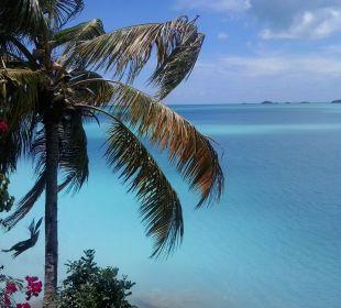 Blick aufs Meer vom Restaurant aus Cocos Hotel