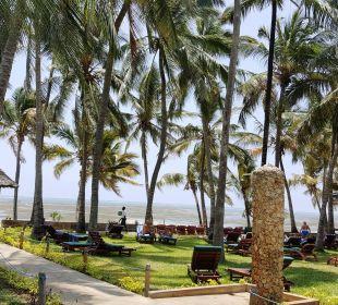 Blick von der Liege Richtung Strand Hotel Traveller's Club