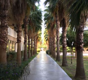 Weg zum Strand  Hotel Royal Garden Select