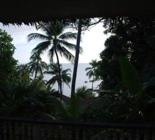 Blick von der Terrasse Hotel Sipalay Easy Diving and Beach Resort