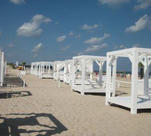 Impressionen am Strand von Warnemünde Hotel Neptun