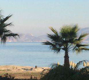Blick von Block 41 auf das Meer Hotel Horizon Beach Resort
