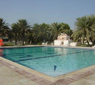 Großer Pool Hotel Flamingo Beach Resort