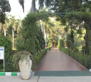 Weg zum Pool Clarks Shiraz Hotel