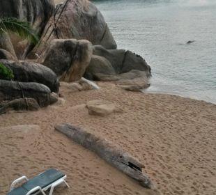 Ausblick Suite  Hotel Coral Cove Chalet