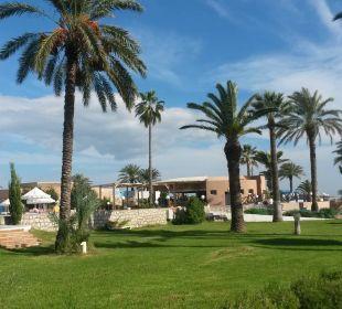 Blick vom Strand zum Pool Royal Lido Resort & Spa