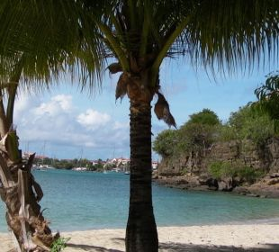 Unser Strand vor dem Hotel Hotel The Calabash