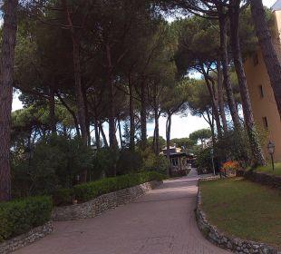 Weg zu einen von drei Hoteltuermen Park Hotel Marinetta