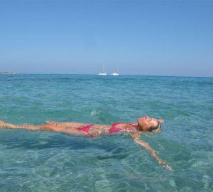 Haus 546 von Sardafit liegt direkt (!) am Meer! Sardafit Ferienhaus Budoni