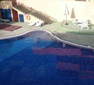 Pool und Liegen Aparthotel El Cerrito