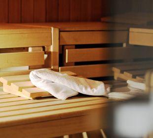 Sauna Hotel Alp Larain