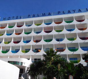Das weiss steht ihm gut Hotel Palma Playa - Cactus