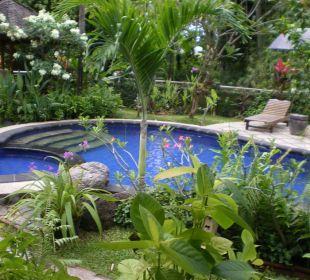 Pool Saraswati Holiday House