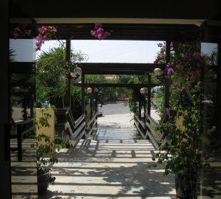 Blick von Lobby nach draußen Hotel Mimosa Beach