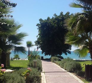 Gartenanlage  Hotel Horus Paradise Luxury Club